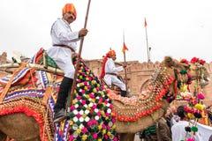 Lancers on Camels Stock Image