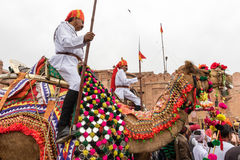 Lancers on Camels Royalty Free Stock Image