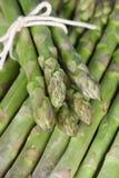 Lances d'asperge Image stock