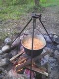 Lanceur avec la nourriture sur le feu dans la forêt de soirée Photographie stock