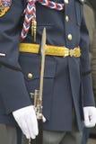 Lancia del ferro sulla parte dell'uniforme di parata Immagine Stock Libera da Diritti
