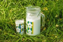 Lanciatore e bicchiere di latte sull'erba verde Immagine Stock