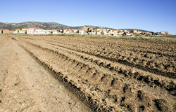 Land. Field in the countryside of spain Royalty Free Stock Image