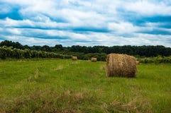 Land Lizenzfreies Stockfoto