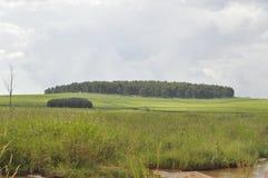 land Royaltyfri Bild