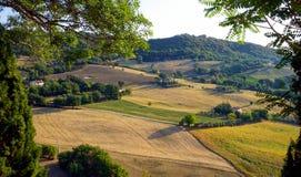 Land av Marche Royaltyfri Fotografi