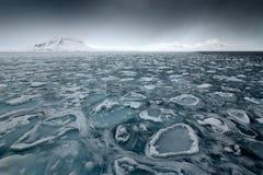Land av is Vinterarktisk Vitt snöig berg, blå glaciär Svalbard, Norge Is i havet Isberg i nordpolen svarta oklarheter Arkivfoto