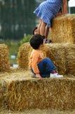 Land-Bauernhof lizenzfreie stockfotografie
