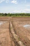 Land bevor dem Pflanzen Stockbild