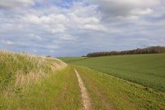 Land bridleway in den Yorkshire-Wolds Lizenzfreies Stockfoto