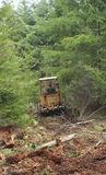Land Clearing. Clearing land with bulldozer on path through trees Stock Images