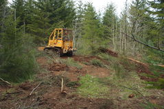 Land Clearing. Clearing land with bulldozer on path through trees Royalty Free Stock Photography