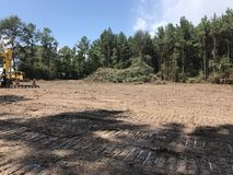 Free Land Clearing And Logging Timber Royalty Free Stock Image - 100338736