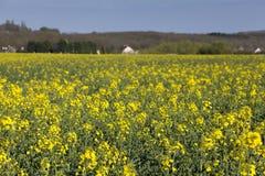 Land in Courson, Essonne Lizenzfreie Stockfotografie