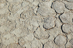 Land cracked background Stock Photos