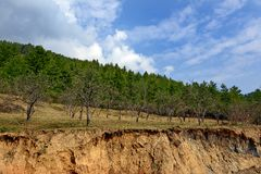 Land Degradation. Is increasingly becoming a serious problem in Bhutan. It is caused both by natural processes and human activities such as unsustainable stock photos