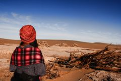Land desertification Stock Image