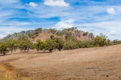 Land door droogte in Hoger Hunter Valley wordt beïnvloed, NSW, Australië dat royalty-vrije stock afbeelding