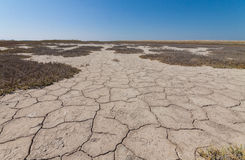 Land with dry and cracked earth. Royalty Free Stock Photos