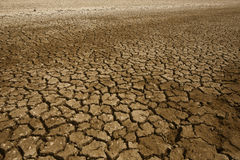 Land with dry and cracked ground. Royalty Free Stock Photo