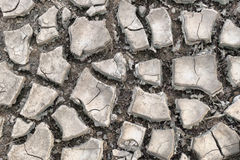 Land with dry and cracked ground. Desert. Royalty Free Stock Image