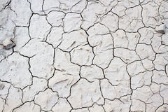 Land with dry and cracked ground. Desert Royalty Free Stock Photo