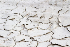 Land with dry and cracked ground. Desert Stock Photography