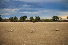 Land with dry and cracked ground. Desert Royalty Free Stock Photos