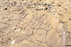 Land with dry and cracked ground. Desert Stock Image