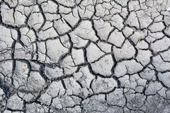 Land with dry and cracked ground. Texture Stock Photos