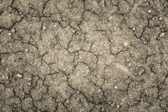 Land with a dry cracked ground , season water shortage. Royalty Free Stock Images