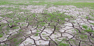 Land with dry cracked mud ground Royalty Free Stock Photography