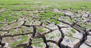 land with dry cracked mud ground Stock Photo