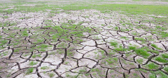 land with dry cracked mud ground Royalty Free Stock Images