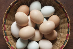 Land eggs. In traditional basket Stock Image
