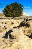 Land erosion. Land eroded from an old abandoned gold mining site Royalty Free Stock Images