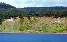 Land erosion. Land or shore erosion: trees fallen over sand dune cliff, climate change Stock Photos
