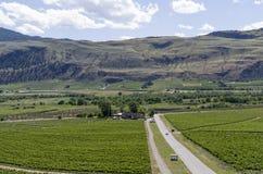 Land för Okanagan dalvin 13 Fotografering för Bildbyråer