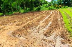 Land für die Landwirtschaft Lizenzfreie Stockfotografie