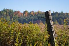 Land-Feld in Autumn Wire Fence With Wooden-Beitrag Stockfotografie