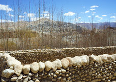 The land is fenced with walls made of stones, spring, Nepal Royalty Free Stock Images