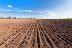 Land on the field for planting. \ bright spring photo ukraine midday stock image