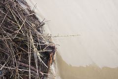 Land flooded by torrential rain. Flooding after a rainstorm - Land flooded by torrential rain Royalty Free Stock Photos