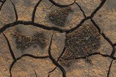 Land gebakken liggen in de hitte De bodem van het opgedroogde meer stock afbeeldingen