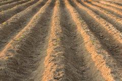 Land gepflogen für das Pflanzen, Landwirtschaftsdetail lizenzfreies stockbild