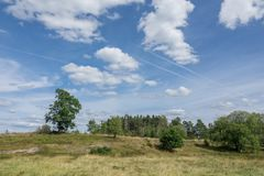 Open landscape with some trees. Land that has been used for Pasture for a long time Royalty Free Stock Image