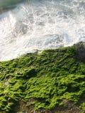Land & hav Arkivfoto