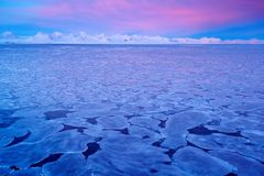 Land of ice. Winter Arctic. White snowy mountain, blue glacier Svalbard, Norway. Ice in ocean. Iceberg twilight in North pole. Pin. K clouds during sunset Royalty Free Stock Images