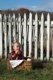 Land-Junge Stockfoto
