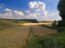 Land-Landschaft Lizenzfreies Stockbild